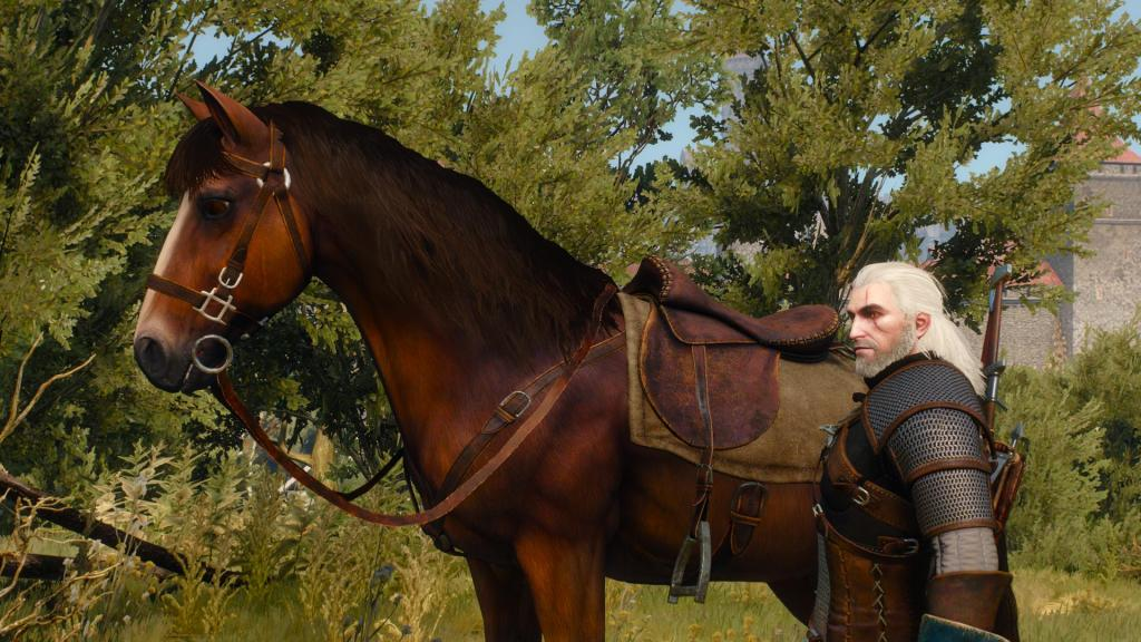 Meet Roach - the BEST HORSE EVER.
