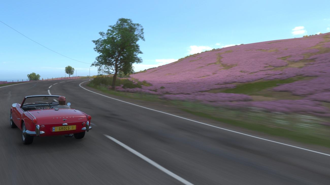 Forza Horizon 4_result